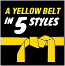 2-A Yellow Belt in Five Styles