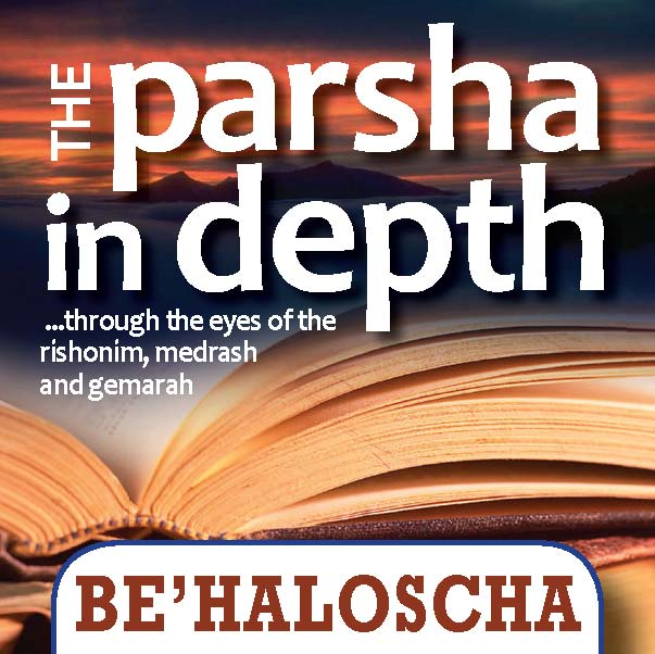 Parsha In Depth - Buttons_Page_36
